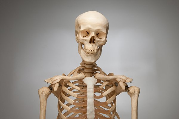 LOOKING AFTER YOUR BONE HEALTH
